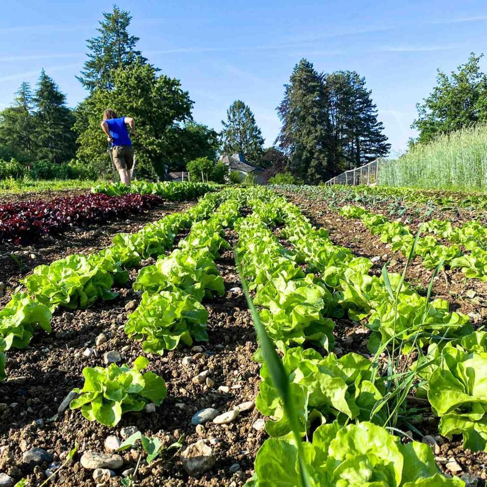 « Une agriculture sans pesticides est possible ! »