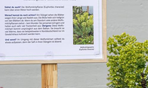 https://goetheanum.co/de/nachrichten/im-goetheanum-park-gibt-es-neu-naturerlebnisstationen