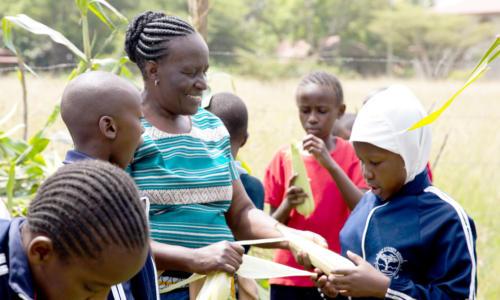 https://goetheanum.co/de/nachrichten/living-farms-steiner-schule-in-kenia-mit-biodynamischer-landwirtschaft