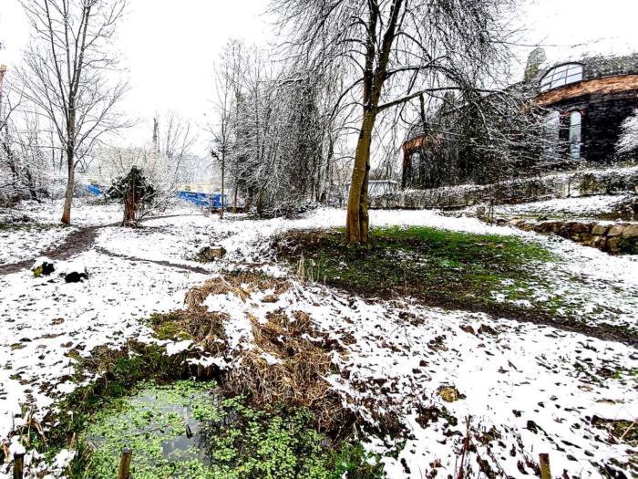 Goetheanum takes legal steps to protect pastureland